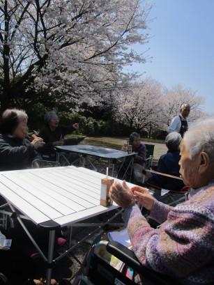 お花見バスハイク (60)