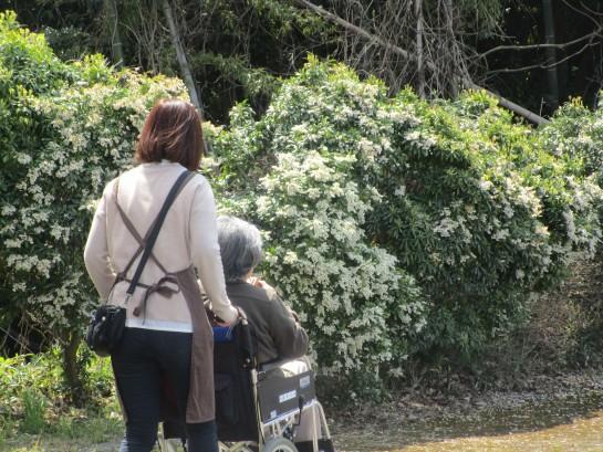 お花見バスハイク (64)