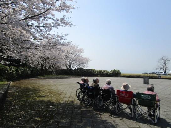 お花見バスハイク (51)