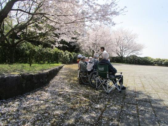 お花見バスハイク (89)